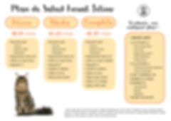 Plan Anual de Salud Felino.jpg