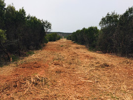 Fence Line and Pipeline ROW