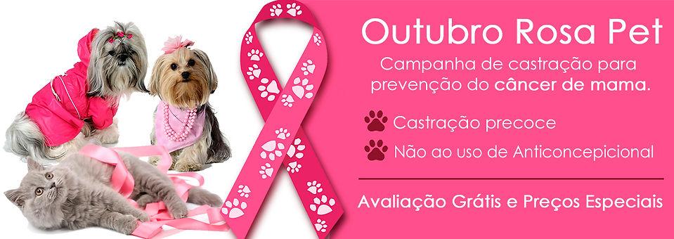 OUTUBRO ROSA 2.jpg