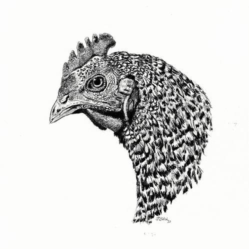 Lindsey Chicken