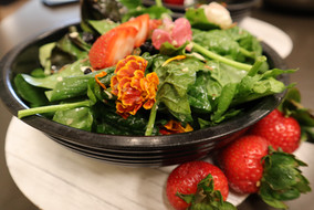 A Healthy Salad from the Good Earth Natural Food Stores