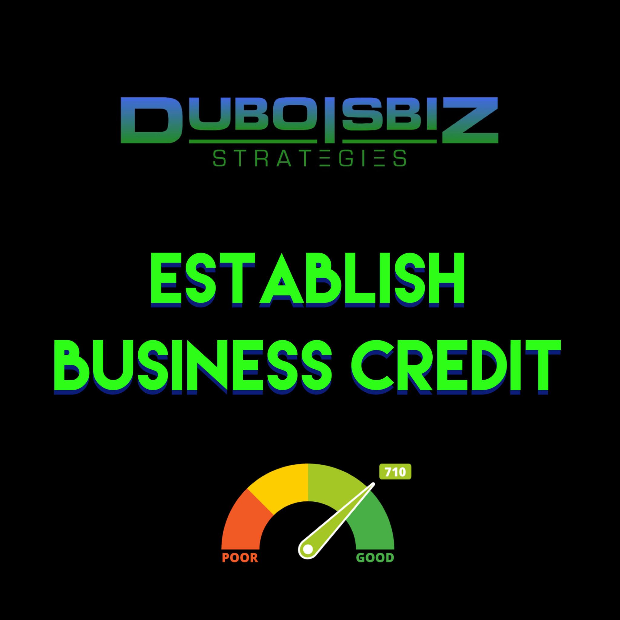 Business Credit Setup Consultation