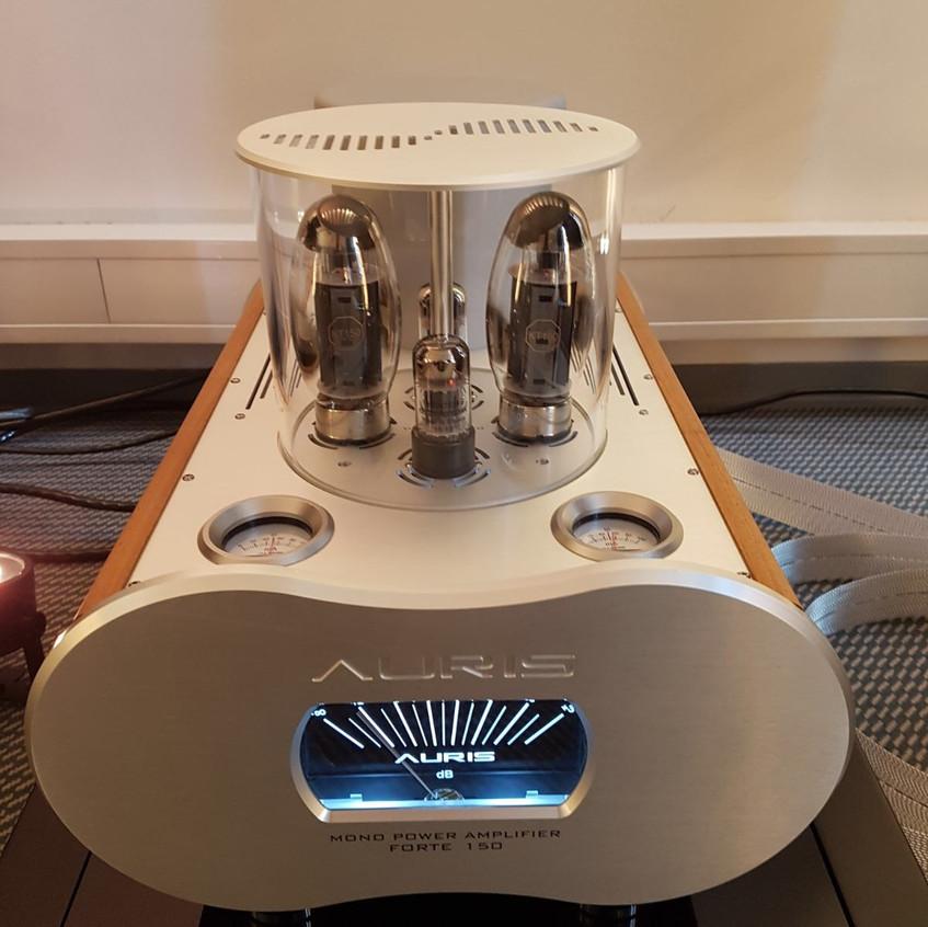 Auris Audio Forte 15 Mono