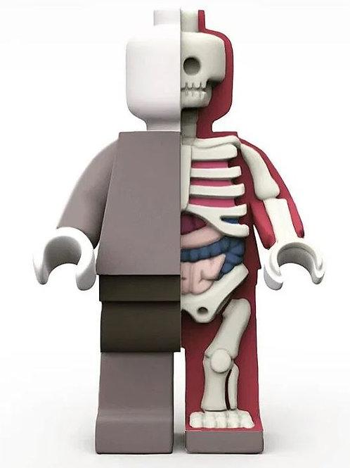 HUGE - Anatomic by Jason Freeny x Mighty Jaxx