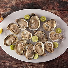 *Oysters (12)