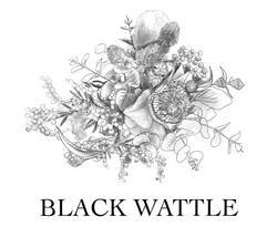 BLACK WATTLE logo design