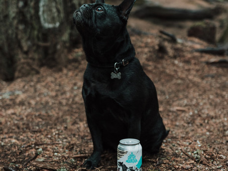 Tubbie hasn't figured out how to open cans but he does love a walk in the woods!