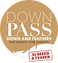logo_downpass_en.png