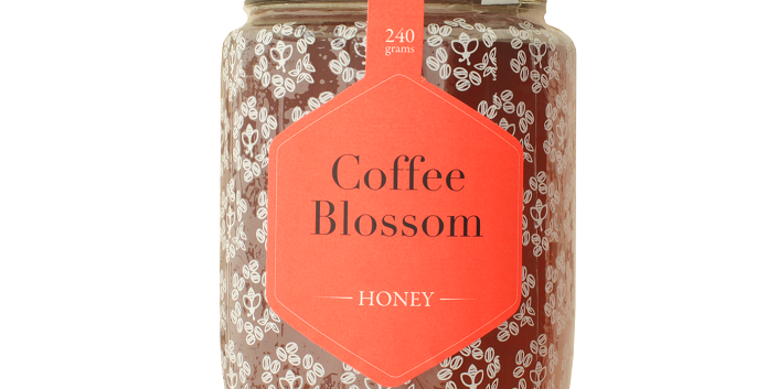 Coffee blossom Honey - 240g