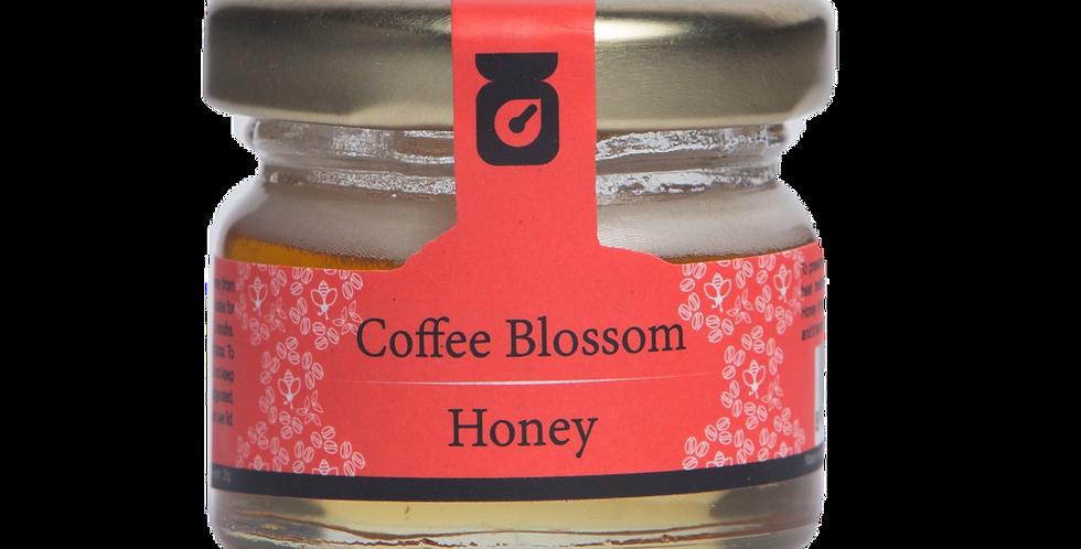 Coffee blossom Honey - 30g