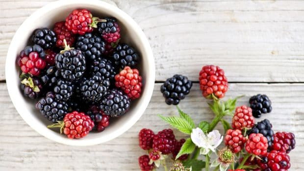 Mulberry Benifit for Skin Health