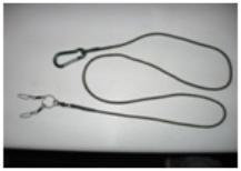 Kestrel leash with set up