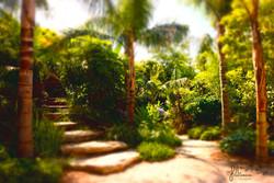 paysagiste-jardinier-amenagement-de-jardins-lavandou-bormes-les-mimosas