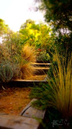 jardin-mediterraneen-escalier-en-bois-PAYSAGISTE-VAR-LAVANDOU-BORMES-TERRASSE-BOIS-FERRONNERIE-MENUI