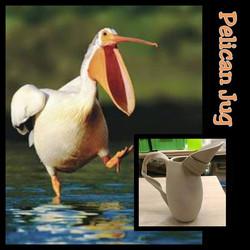 Pelican Jugs