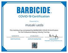 certificate Masaki.jpg