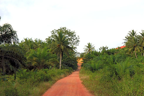 Vision: African Earth Road (rough route) in Takoradi, Ghana.