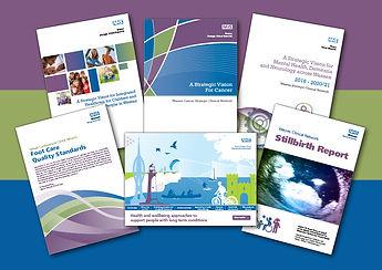 WessexClinicalSenate-marketing-materials
