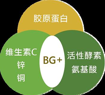 BG + collagen(C)@4x.png