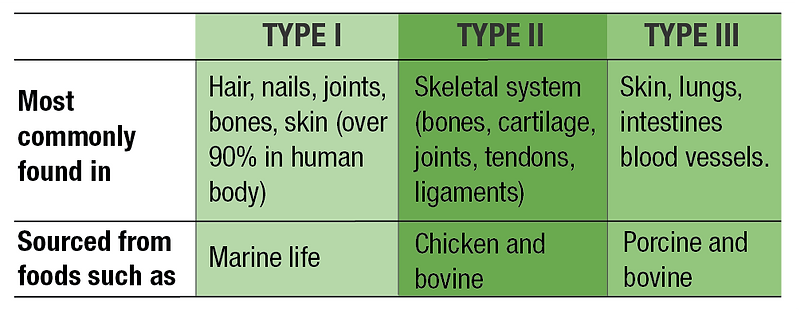 types of collagen@4x.png