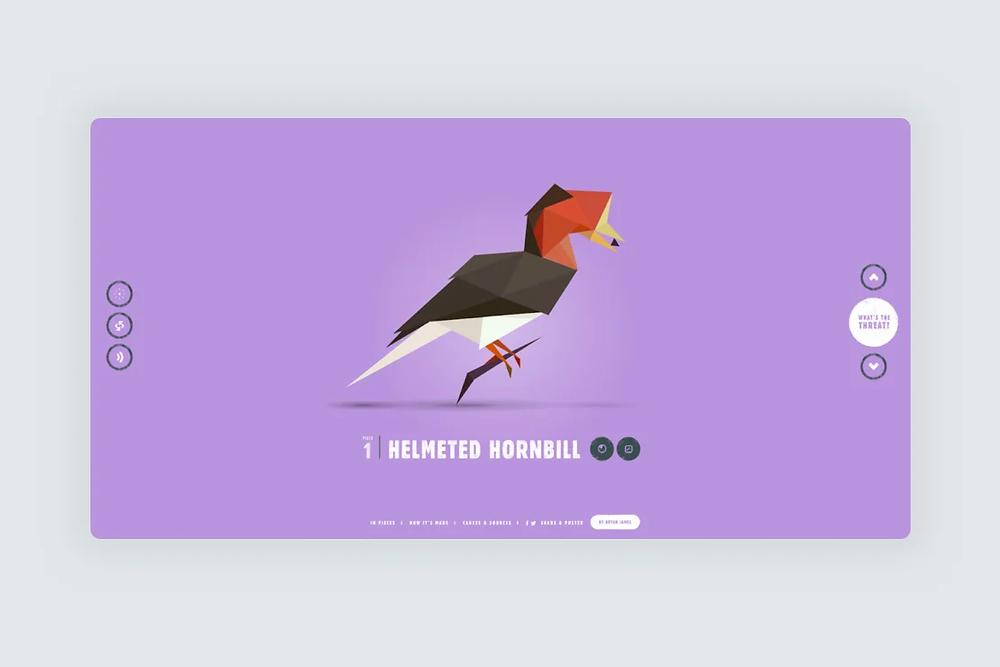 A website screenshot with an illustration of the helmeted hornbill bird