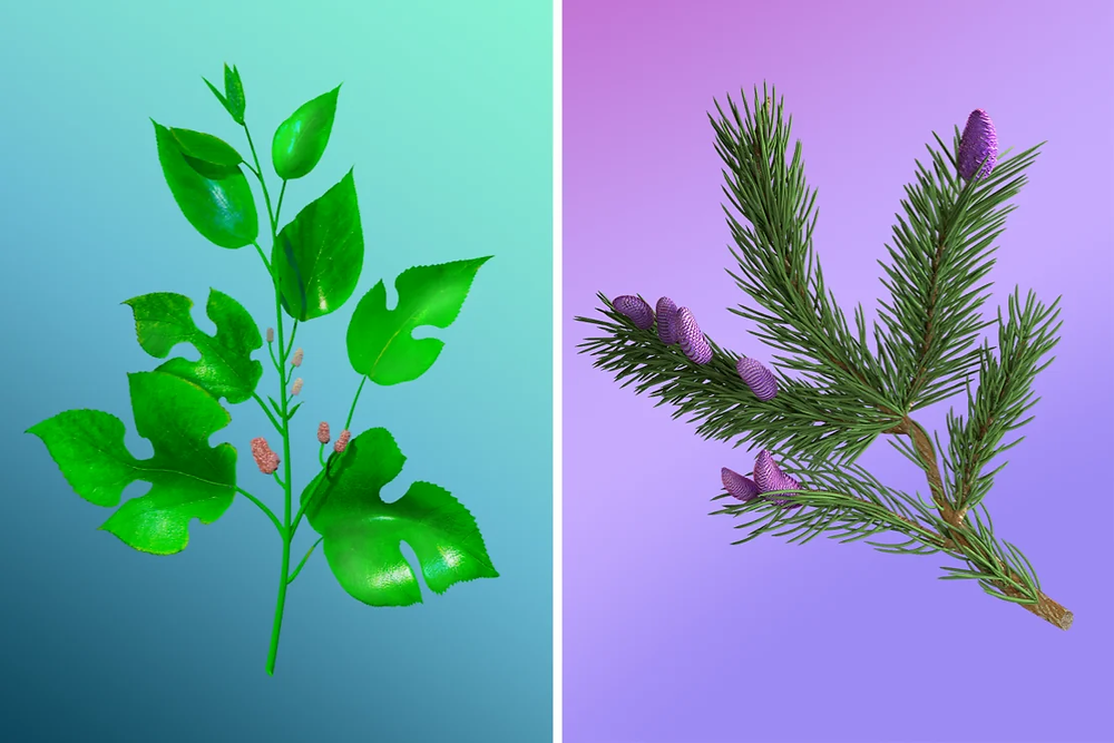 3D visuals of leaves with branches on plain colored gradient background