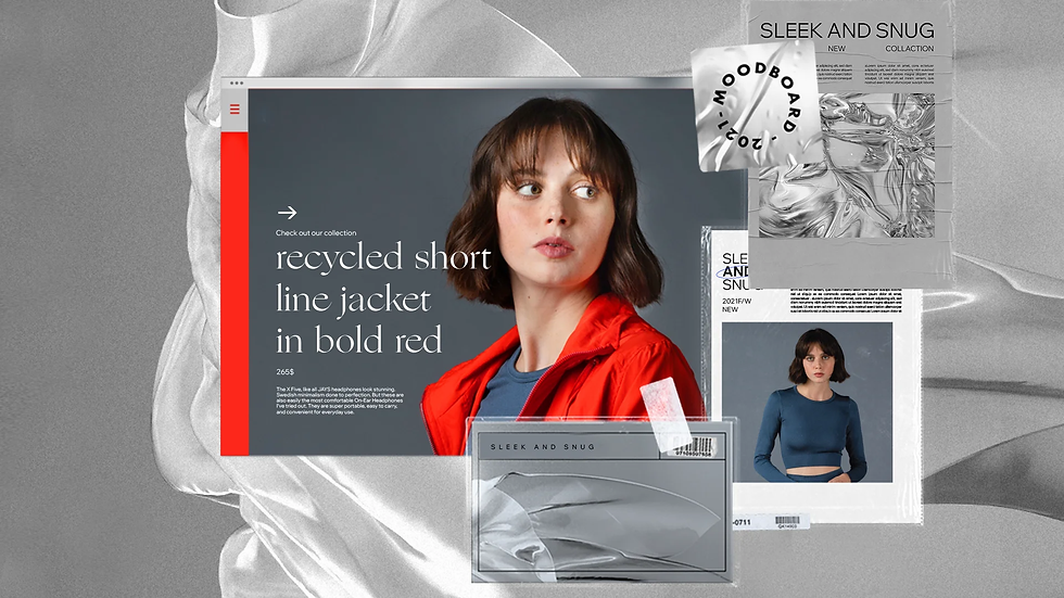 A mood board for a fashion eCommerce website, showing various screens and silver, metallic elements