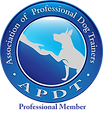 APDT (Transparent).png