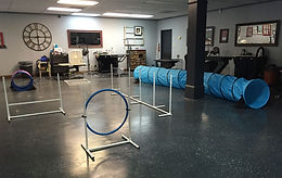 Agility equipment set up ready for class!