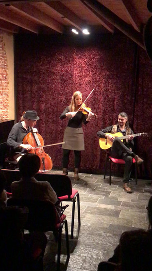 Wild Strings Trio