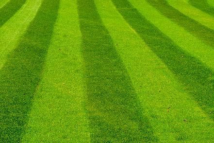 bigstock-Green-Grass-Lawn-Mowed-In-A-St-