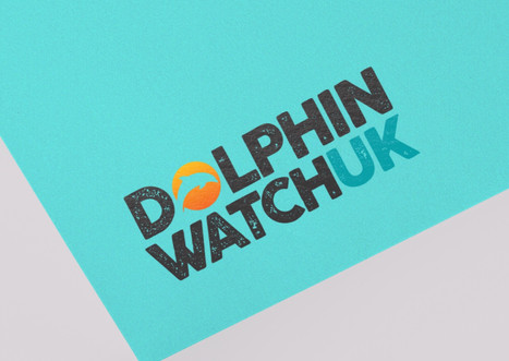 Dolphin Watch UK
