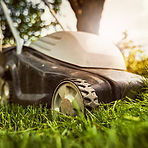 A mowing grass lawn of an electric mower