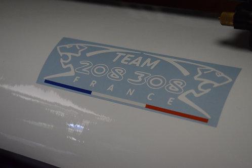 TEAM 208 /308 FRANCE