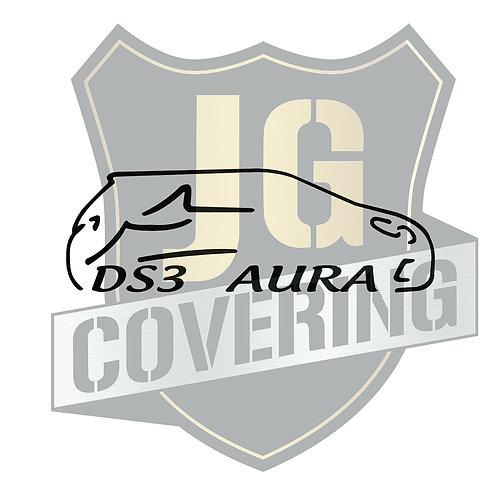 Groupe DS3 AURA