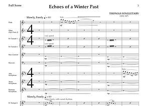 Echoes of a Winter Past