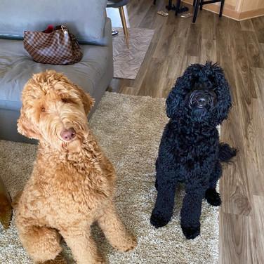 Winnie with Toby