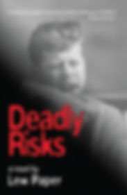 Deadly Risks, Lew Paper, conspiracy, JFK assassination, thriller