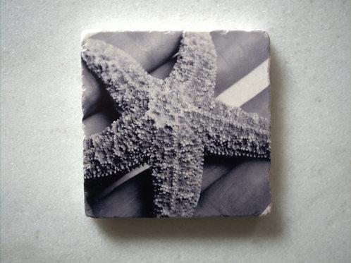 Set of 4 Marble Art Coasters - Starfish