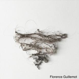 Florence Guillemot Vilain