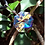 Thumbnail: Crystal Shield