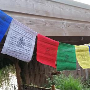 Tibetvlaggen