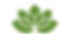 logo nieuw_bewerkt.png