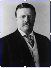 Great Mediators in History #8. Teddy Roosevelt.