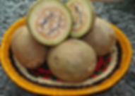 fruit_in_Embera.png