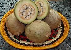 jagua fruit.png