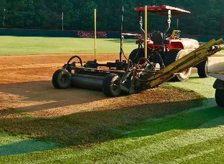 What IS turfplaning®?