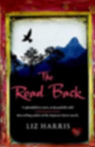 the road back liz harris book cover.jpg