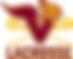 Vikes Lax Logo Image.png