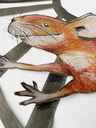 Hamsterrad Detail